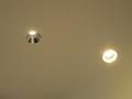 左が「LEDグレアユニバーサルダウンライト」、右が従来の照明。従来照明は反射光で天井を明るく照らす。直視すると眩しいくらいだ。「LEDグレアユニバーサルダウンライト」は反射せず、真下のみを明るく照らす。